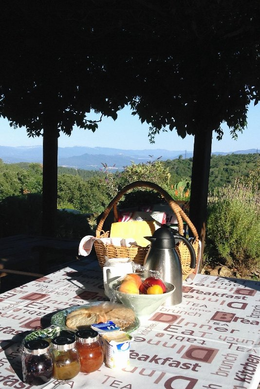 Breakfast under the pergola with valley views