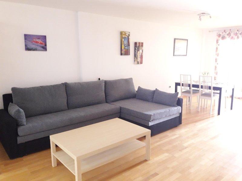 Salón con sofácama XL. Hall with a king size sofabed.