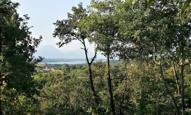 vista para o lago do jardim principal