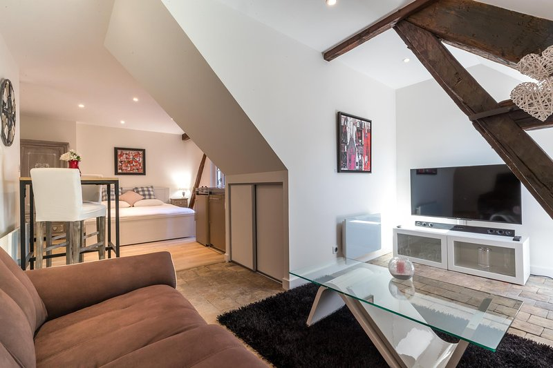 Appartement mansardé T1 plein centre +parking, vacation rental in Levernois