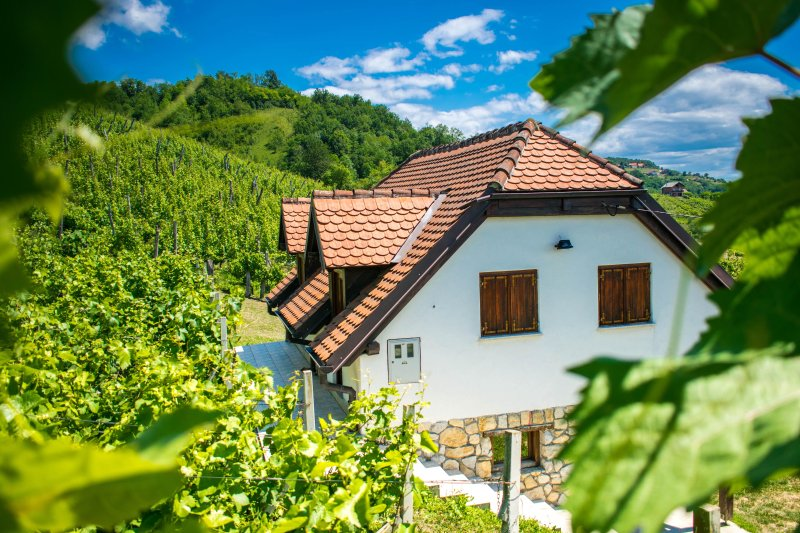 Wine Hill, Croatia, vacation rental in Krapinske Toplice