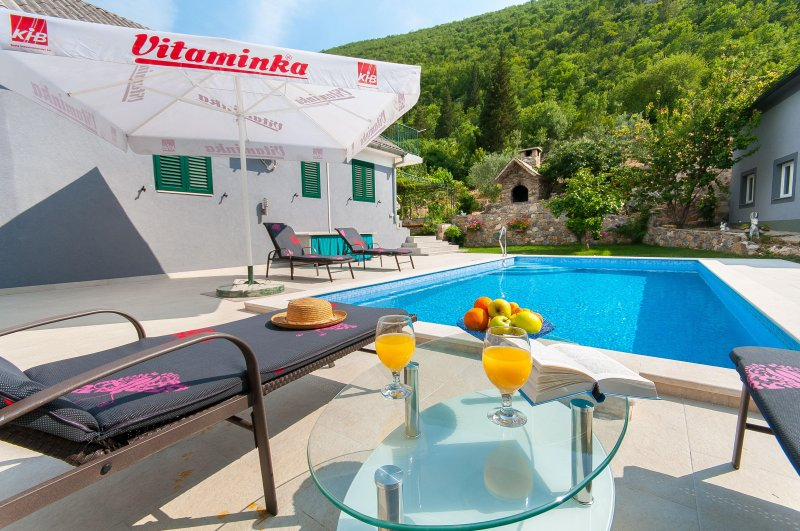 TWO HOUSES WITH POOL FOR UP TO 10 PEOPLE, location de vacances à Kucice