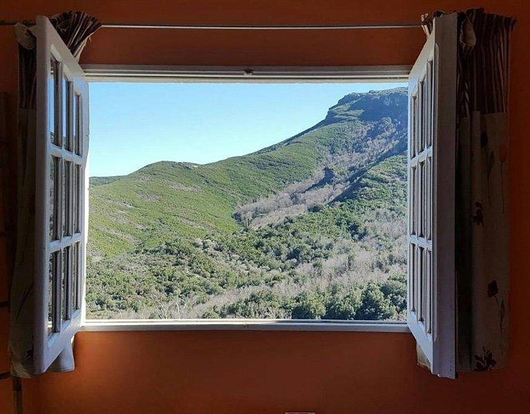 Gite 4/6 personnes Cap Corse entre mer et montagne côté Forêt, holiday rental in Ogliastro
