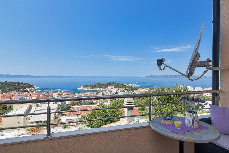 SA Zeleni (2+1): terrace view