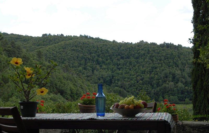 Chianti appartamento su due livelli in collina, splendide passeggiate, visite, casa vacanza a Casole