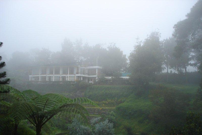 Vista desde la estación de Pinewood en las mañanas de niebla típicos