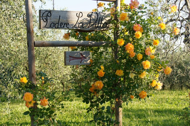 You are welcome to stay at PODERE LA VILLA, one of the most charming places near Florence.