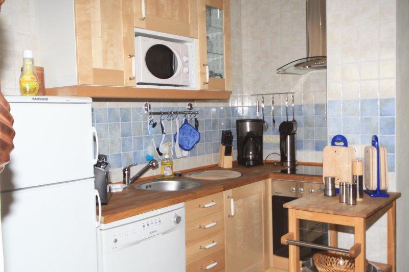 Cocina Apartamento sala de ordeño en Ferienwohnanlage Alte Molkerei