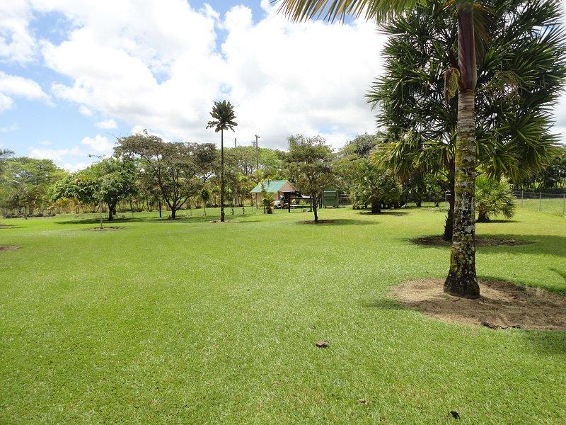 Parque como el establecimiento