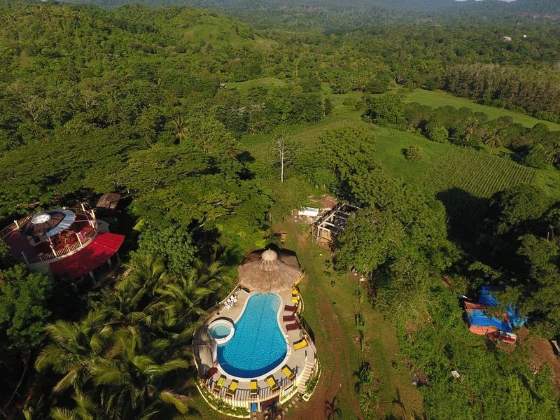 Drone view of swimming pool and jungle