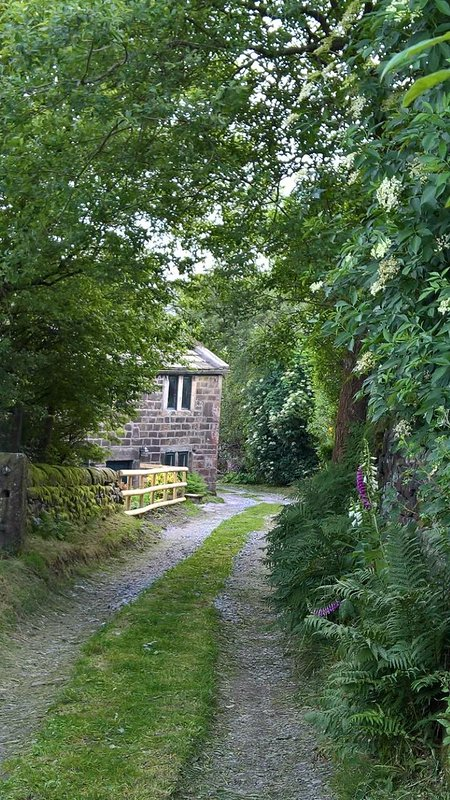 Lane to the cottage