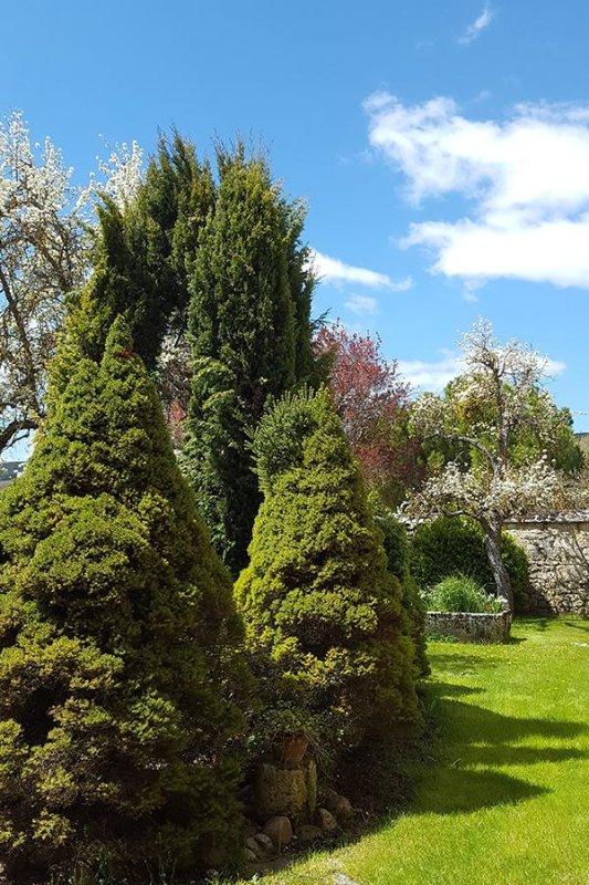 Um jardim secreto ....