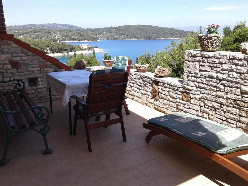 Apartments Belvedere - A3, vacation rental in Necujam