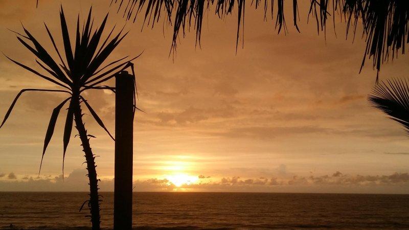 La plage la plus belle au Mexique vous attend - Tarifs abordables !!
