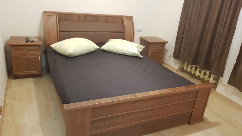 Room Size: 215 ft² 1 completo letto in camera: Vasca da bagno, TV, telefono, asciugacapelli, ferro da stiro, pipistrello comune