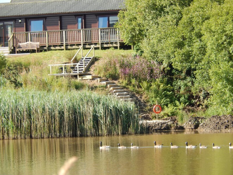 Waterside Lodge - private gardens with fishing.