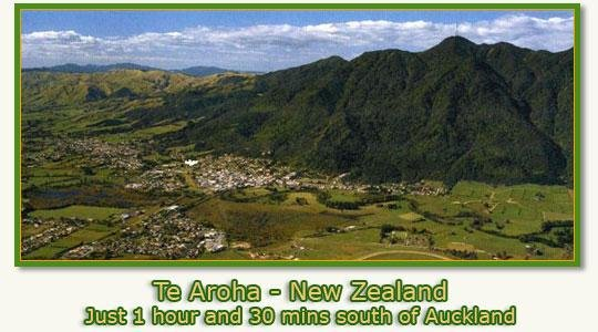 Hillside Homestay, vacation rental in Te Aroha