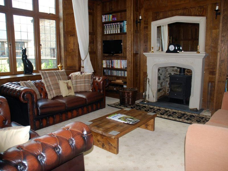 The wood panelled drawing room with gothic fireplace and wood burning stove.