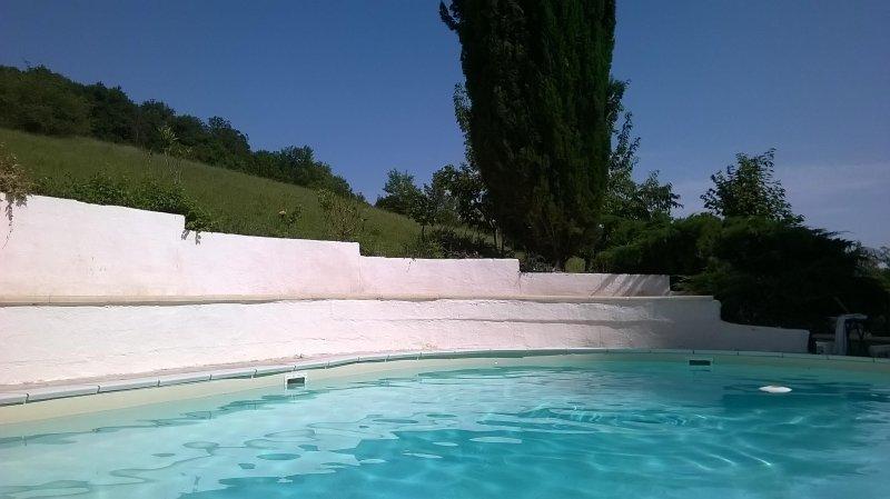 la magnifique piscine 12x6m
