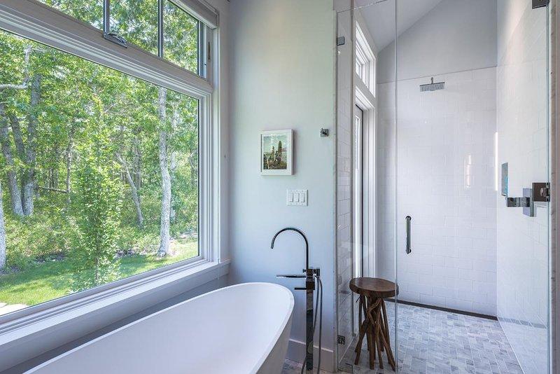 Maste Bath, Soaking Tub walk in Glass  Shower