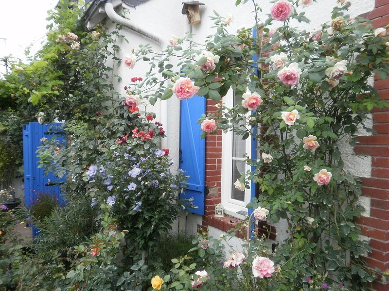 La Closeraie maison d'hôtes de charme, location de vacances à Briollay