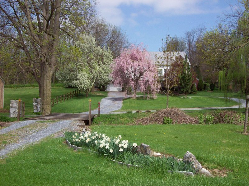 Spring at Fulling Mill Inn
