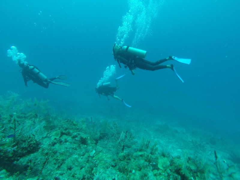 My wife and I diving in Mahahual