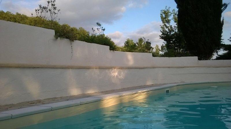 Großzügiges Zimmer geeignet auch für Gehbehinderterte mit schattigem Park, Pool, holiday rental in Montagnac-sur-Auvignon