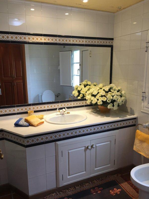 baño 2 (completo: inodoro-lavabo-bañera y bidé)