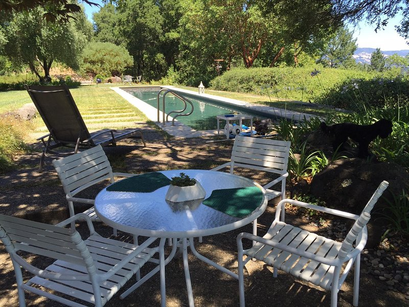 Dry Creek Vineyard Estate Guest Cottage Has Internet