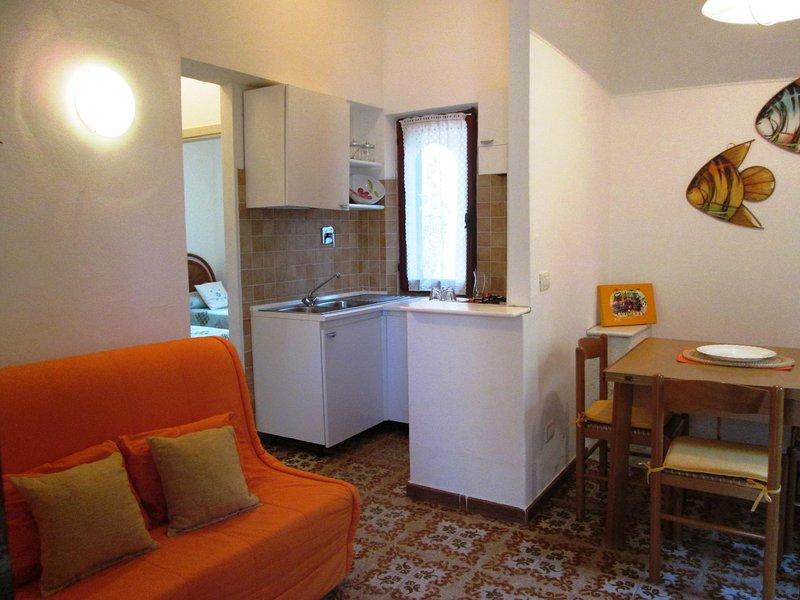 Coin cuisine ouvert aux espaces de vie et salle à manger (la cucina)