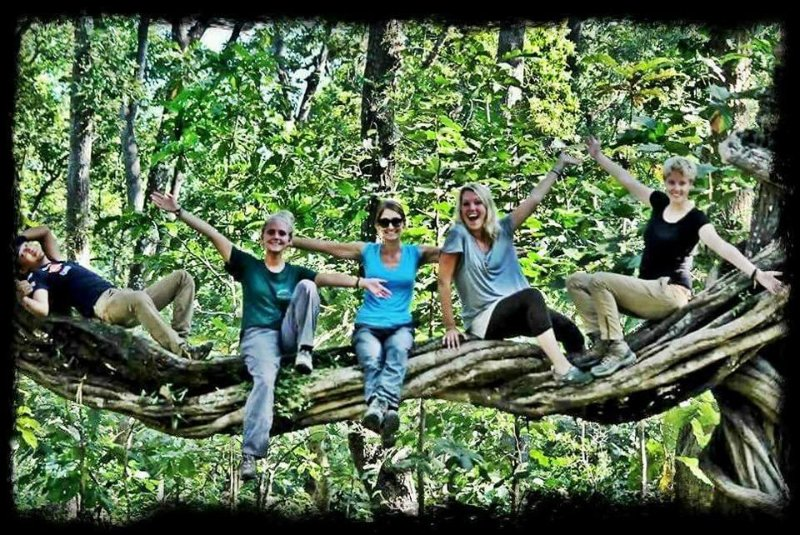 Best company for Kerala Tour Packages, vacation rental in Kaloor