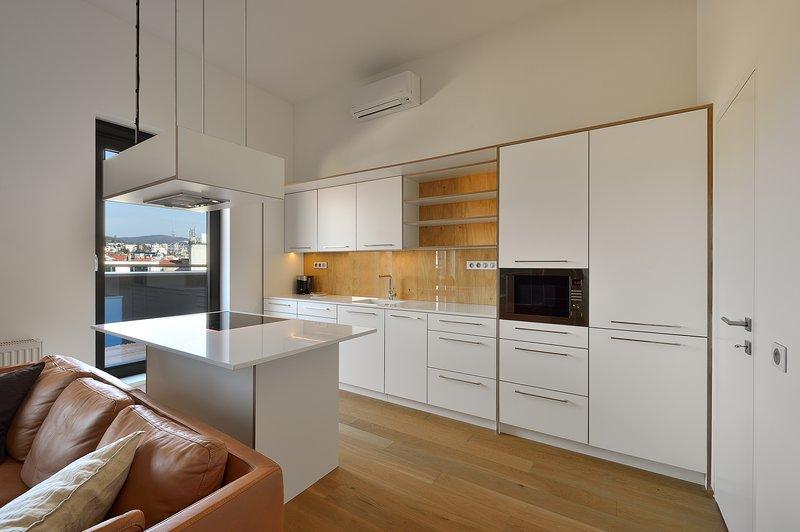 Penthouse, holiday rental in Bratislava Region