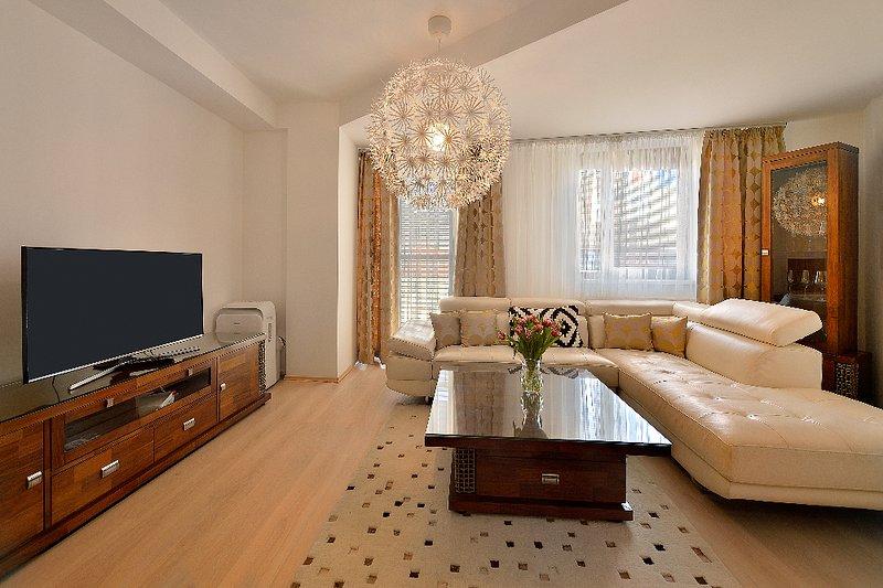 salon (appartement 3.6)