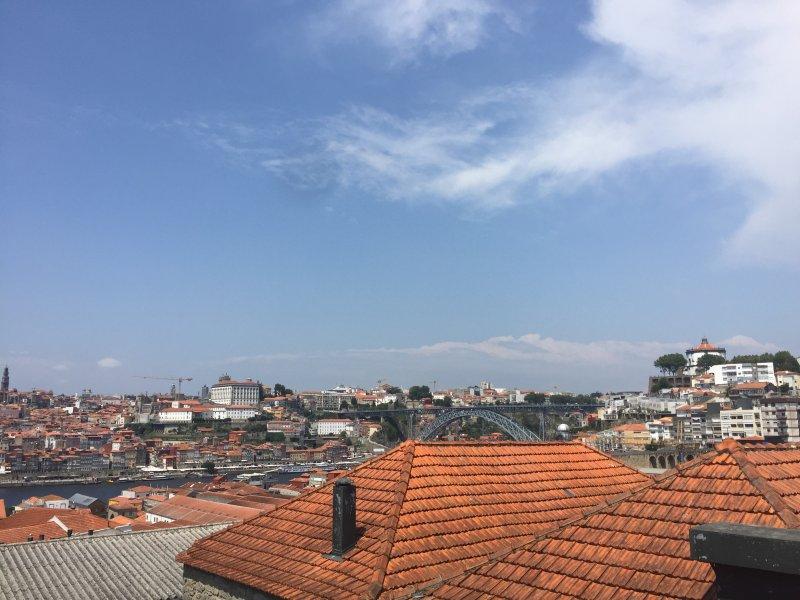 Tejados de las bodegas del puerto, con una vista de Porto y el puente