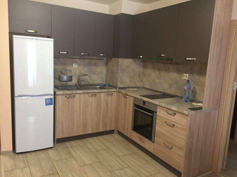 Apartment Black Sea Burgas, holiday rental in Sarafovo
