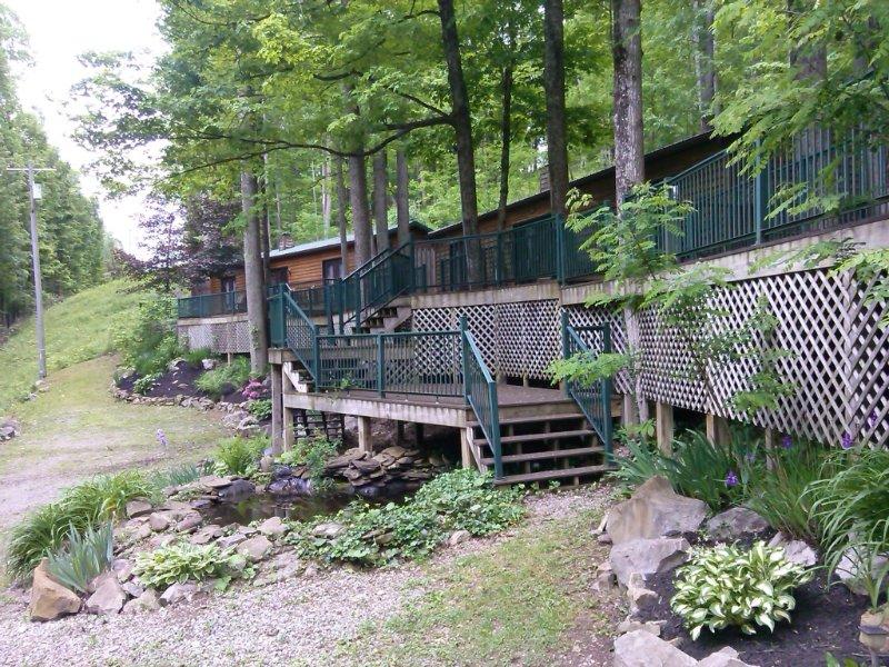 Pet Friendly Cabin Rental Elkins, WV, holiday rental in Bowden