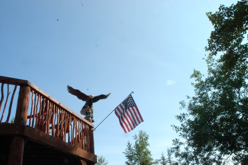 Eagle & Flag from driveway