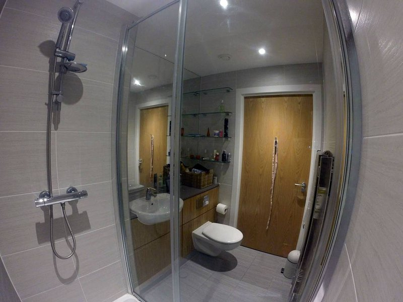 Maître puissance de bain privée douche et WC