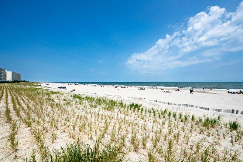 Idealmente situado a sólo una cuadra de la playa, esta propiedad es el hogar perfecto para todas sus excursiones de la Costa Este.