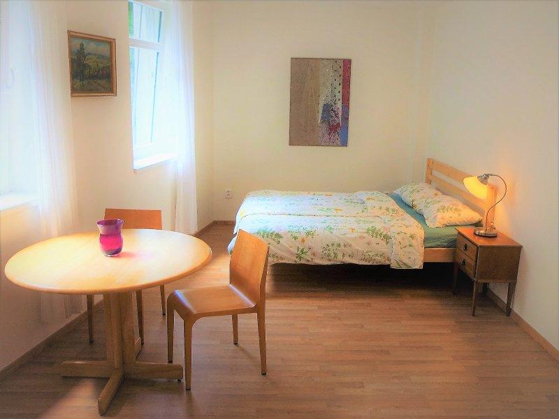 Bright&Quiet Apt. with Sauna in the Center, holiday rental in Jiloviste