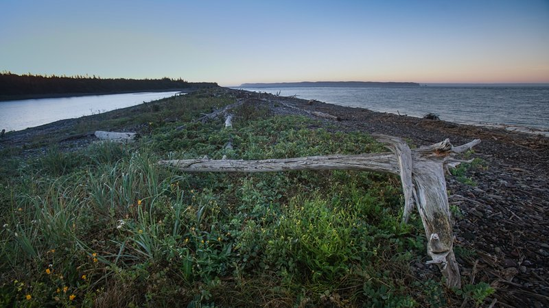 Salt water marsh on your left & Bay of Fundy on your right