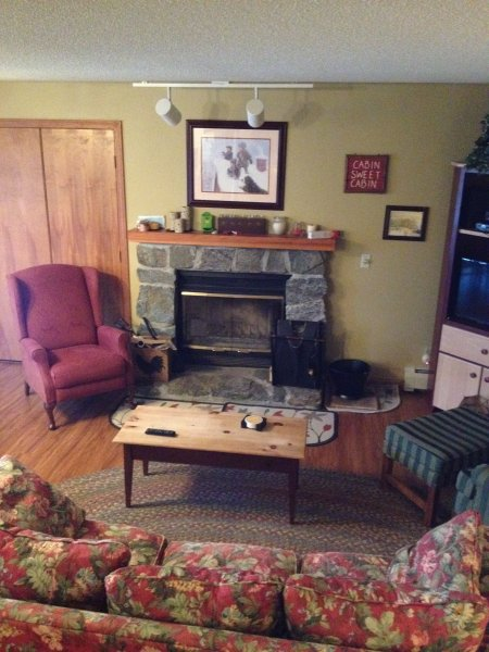 Living room with wood burning fireplace, TV, DVD and VHS player,