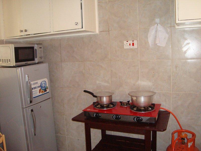 Kitchen area/spice rack