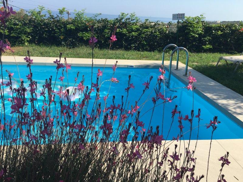 La piscina a través de una nube de color rosa ...