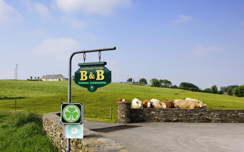 Coolbawn Lodge Farmhouse - B&B - Bedroom 2, holiday rental in Drinagh