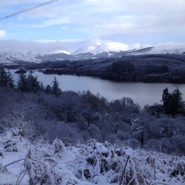 A winter scene. You can just glimpse the lodge in the trees