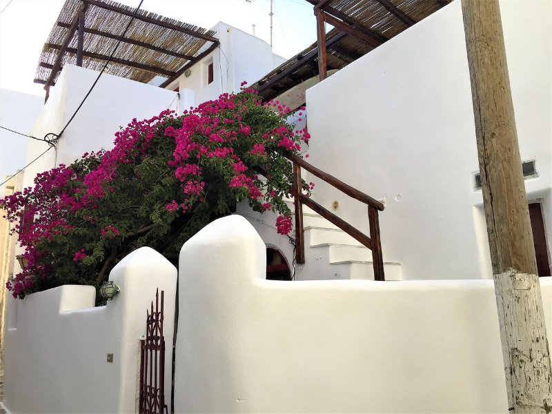 Tsigonias Traditional Villa, vacation rental in Lefkes