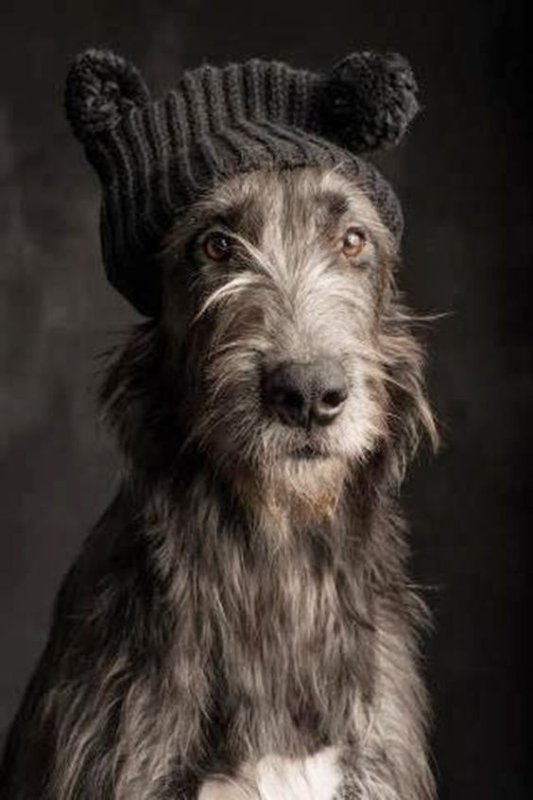 ...and don;t forget to bring your wooly hat