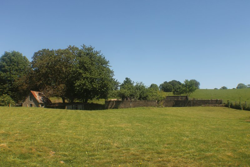 View across the paddock to the orchard